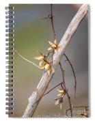 030a Spiral Notebook