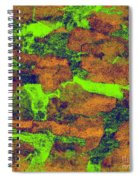 0374 Abstract Thought Spiral Notebook