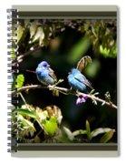 0430-005 - Indigo Bunting Spiral Notebook