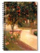 Garden Alcazar Seville Spiral Notebook