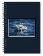071118-50-c Spiral Notebook