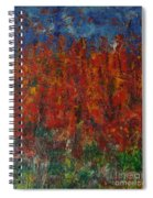 073 Abstract Thought Spiral Notebook