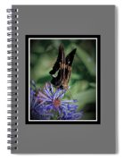 091809-254 Spiral Notebook