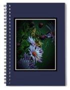092009-186 Spiral Notebook