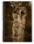 Wooden Face Spiral Notebook