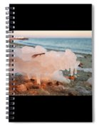 1-1-18--5790 Don't Drop The Crystal Ball Spiral Notebook