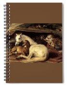 10234 Edwin Henry Landseer Spiral Notebook