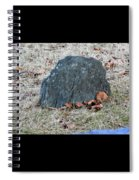 1-20-18--7452 Don't Drop The Crystal Ball Spiral Notebook