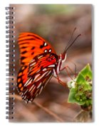 4534 - Butterfly Spiral Notebook