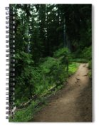 A Path In Paradise Spiral Notebook
