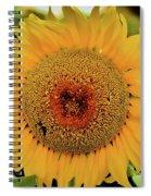 A Texas Flower Spiral Notebook