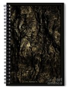 Abstract Gold And Black Texture Spiral Notebook
