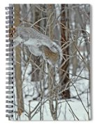 Acrobat Of The Forest Spiral Notebook
