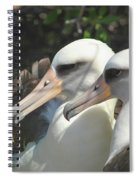 Albatross Lovers Spiral Notebook