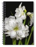 White Amaryllis Spiral Notebook
