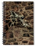 Amazing Optical Illusion - Can You Find The Giraffe Spiral Notebook