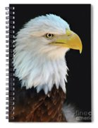 American Bald Eagle Spiral Notebook