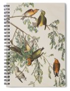 American Crossbill Spiral Notebook