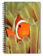 Anemone And Nemoish. Spiral Notebook
