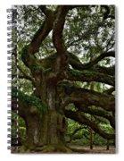 Angel Oak Spiral Notebook