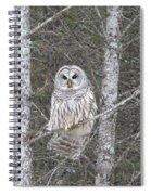 Angel Owl Spiral Notebook