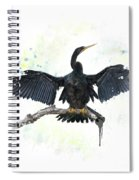 Anhinga Bird Spiral Notebook