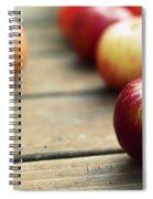 Apple Spiral Notebook