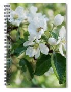Apple Flowers Spiral Notebook