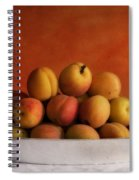 Apricot Delight Spiral Notebook