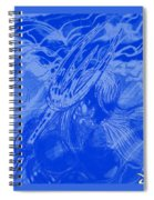 Aquaman Spiral Notebook