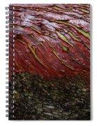 Arbutus Tree Bark Spiral Notebook