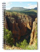 Arizona Landscape Spiral Notebook