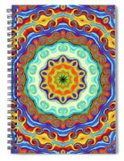 Art Spiral Notebook