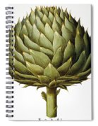 Artichoke, 1613 Spiral Notebook