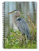 At Water's Edge Spiral Notebook