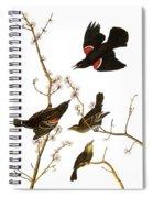 Audubon: Blackbird, (1827) Spiral Notebook