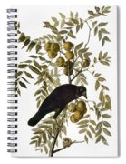 Audubon: Crow Spiral Notebook