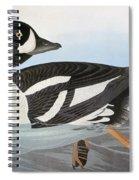 Audubon Duck Spiral Notebook