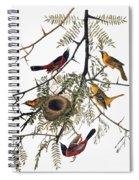 Audubon: Oriole Spiral Notebook