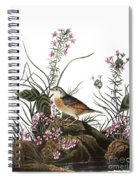 Audubon: Sparrow, (1827-38) Spiral Notebook