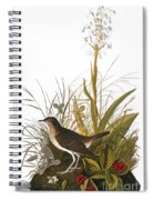 Audubon: Thrush Spiral Notebook