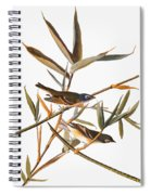Audubon: Vireo Spiral Notebook