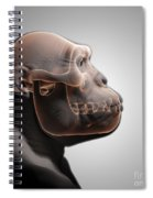 Australopithecus With Skull Spiral Notebook