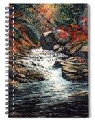 Autumn Brook Spiral Notebook