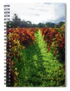 Autumn Vineyard In The Morning  Spiral Notebook