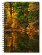 Autumns Calm Spiral Notebook