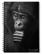 Baby Bonobo Portrait Spiral Notebook