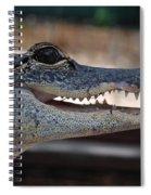 Baby Gator Spiral Notebook