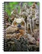 Baby Great Horned Owl Spiral Notebook