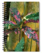 Bamboo Flower Spiral Notebook